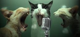 use-your-chromecast-as-karaoke-machine-1280x600